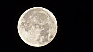 Conseil municipal sous influence... L'hyper lune dans le ciel de Mauguio le 14 novembre 2016